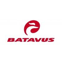 Batavus